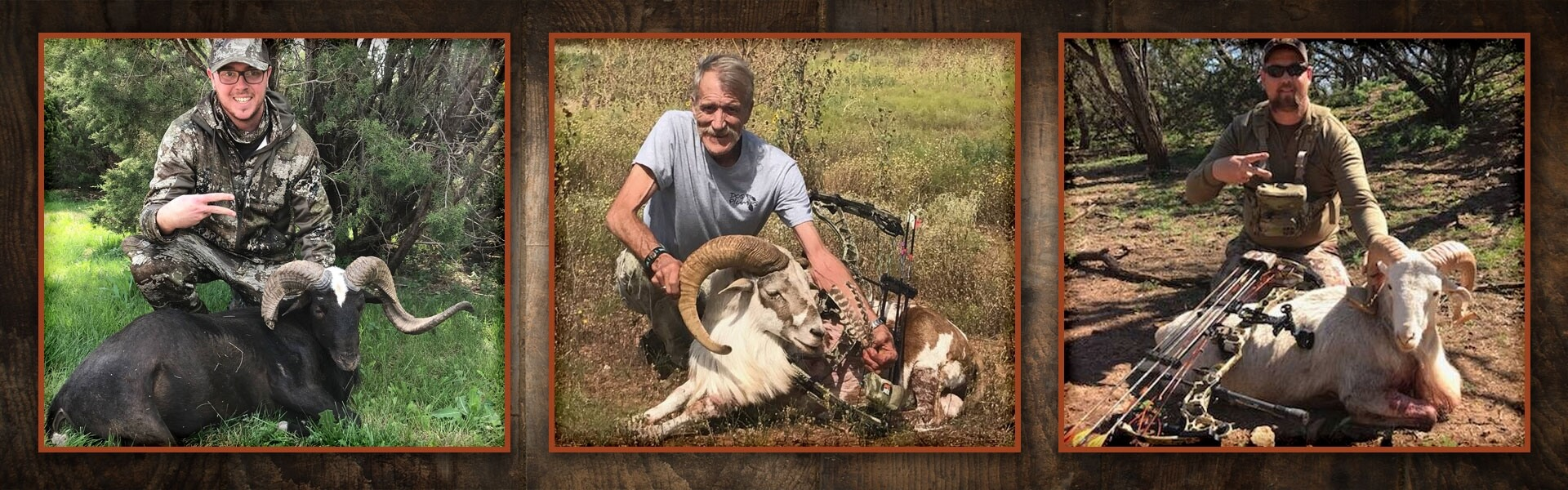 Ram & Hog Combo Hunts in Texas